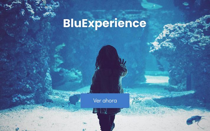 Bluexperience Azul Comunicación